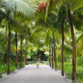 maldives10-